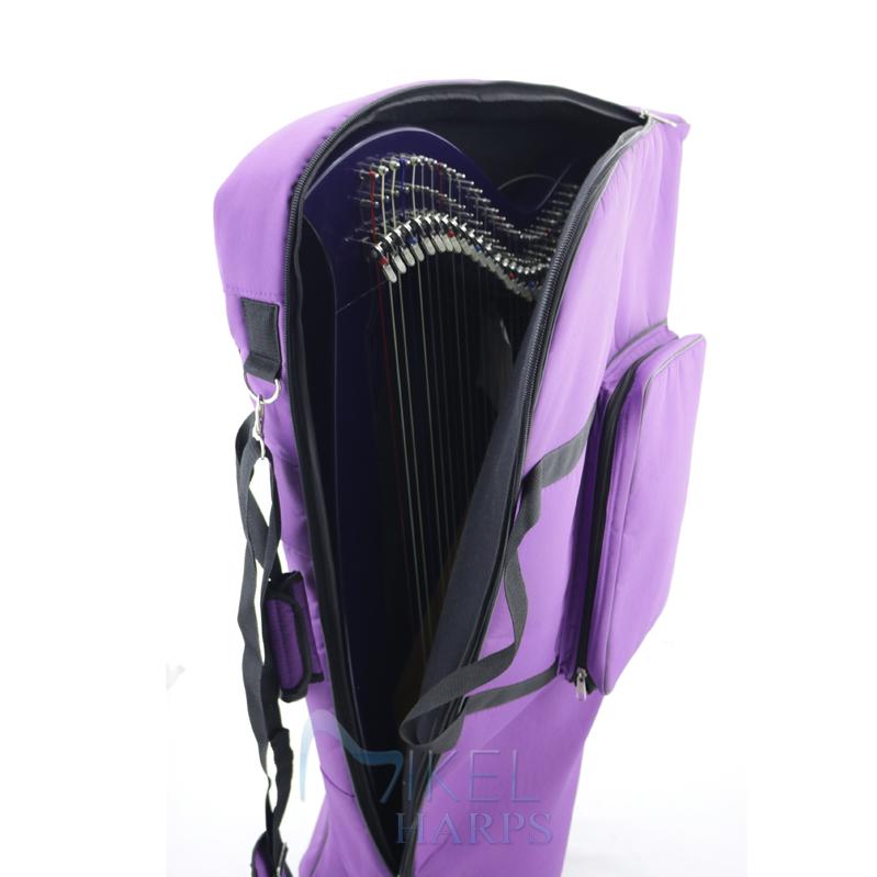 27 String Harp in Cover