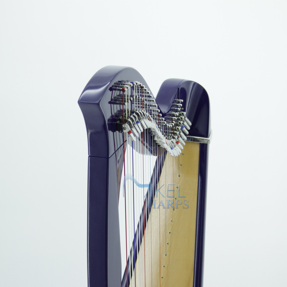 27 String Harp front view