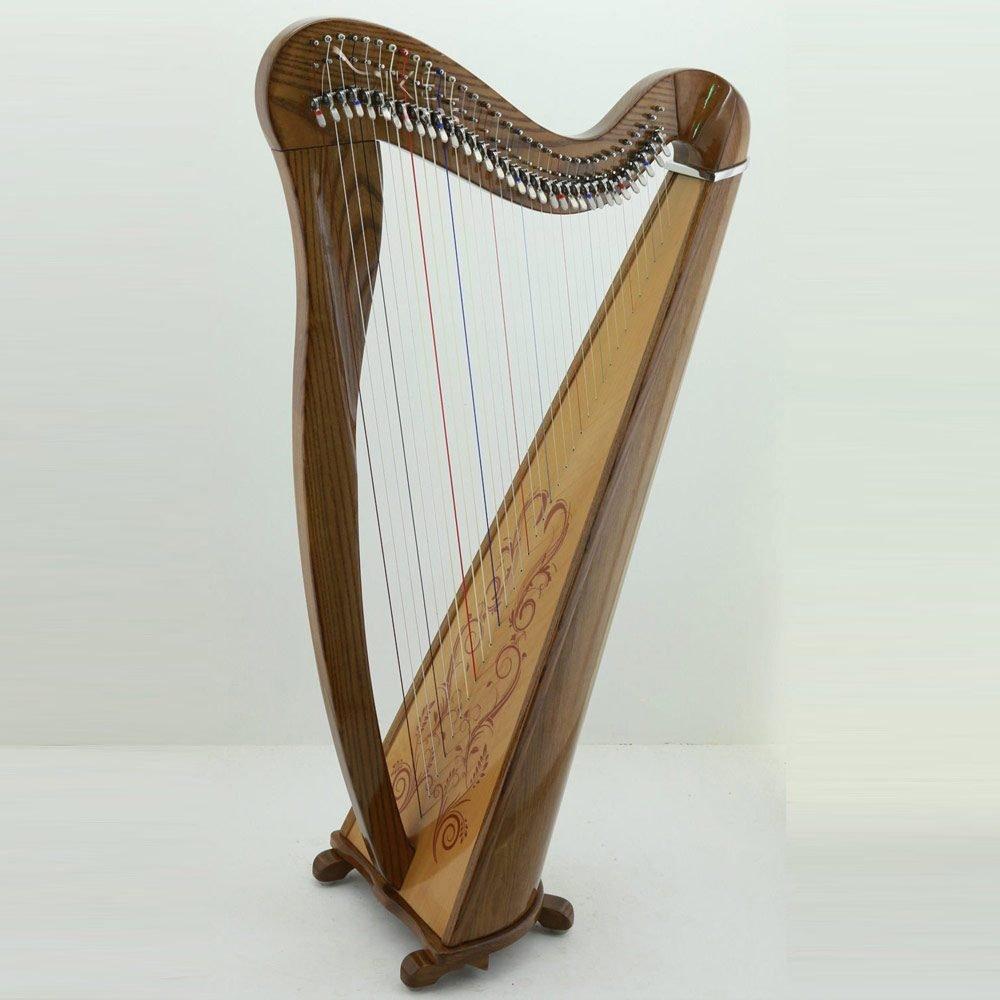34 Strings