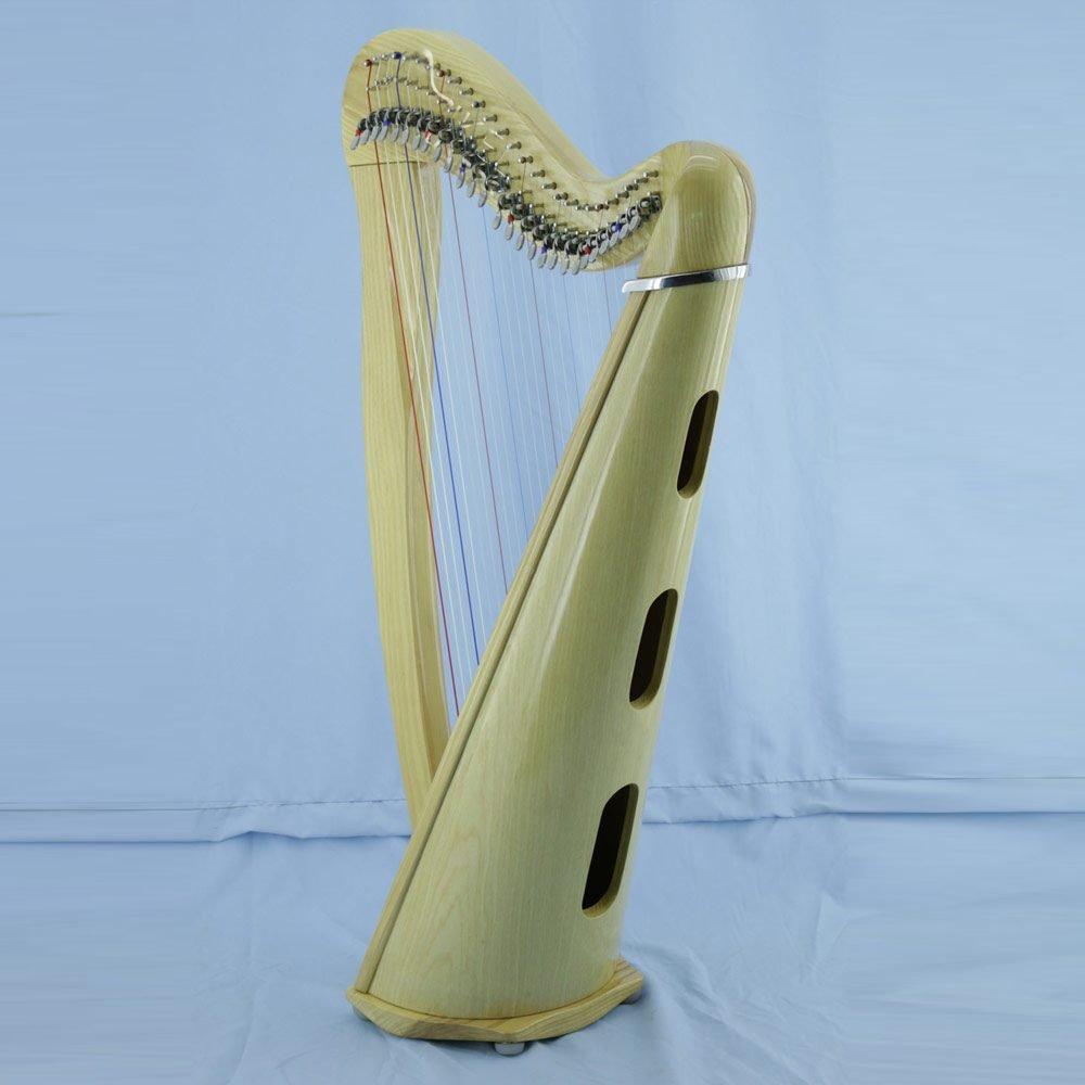 Aster 27 Soundbox soundholes