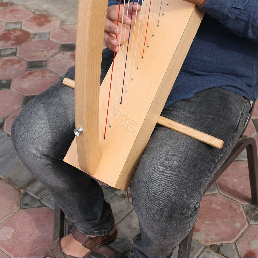 Lap-Harp-sick-with--Mikel-Harps