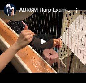exam on mikel harp